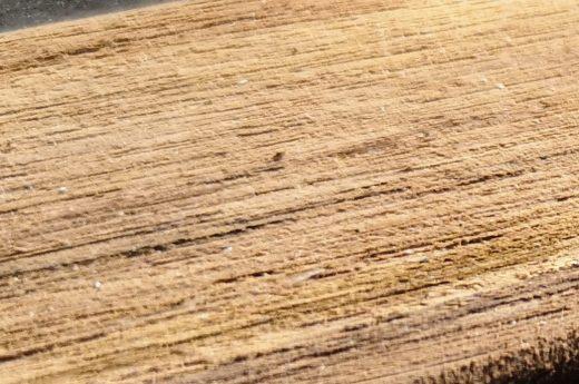 Consistent wood grain effect